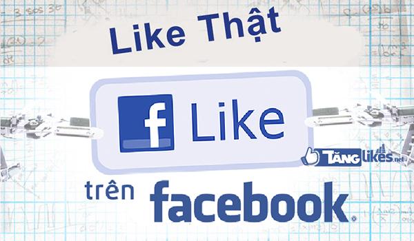Dịch vụ tăng like fanpage facebook giá rẻ like thật